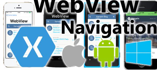 webview nav